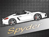 981 Boxster Spyder (seit 2015)