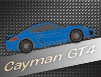 981 Cayman GT4 (seit 2015)